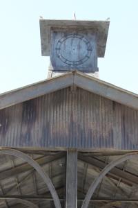 cockatoo island 116