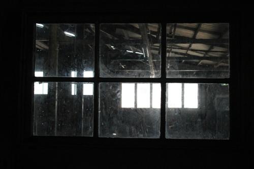 """Weekly Photo Challenge""""  Window"""