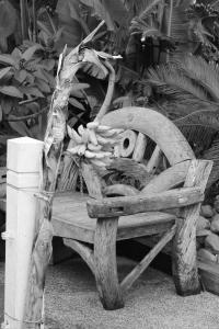 palm beach 272