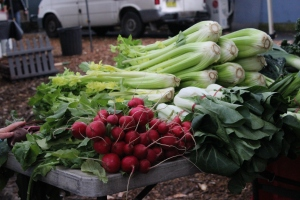 Mudgee food  Marrickville markets stanwell park 127