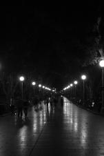 Sidewalk, or promenade in Sydney's Hyde Park