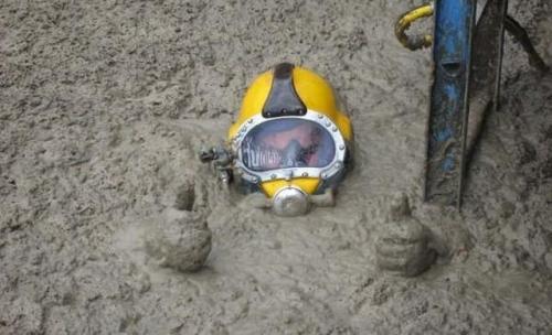 professional-poo-diver-1413240957612